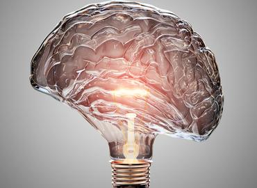 זיכרון גורלי - איך עובד הזיכרון והאם אפשר לסמוך עליו?