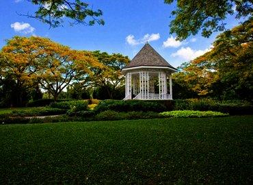 POP UP YOGA (Botanic Gardens)