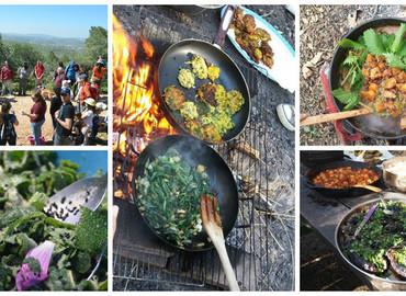 ארוחה מאוצרות הטבע: מלקטים, מבשלים ומגלים!