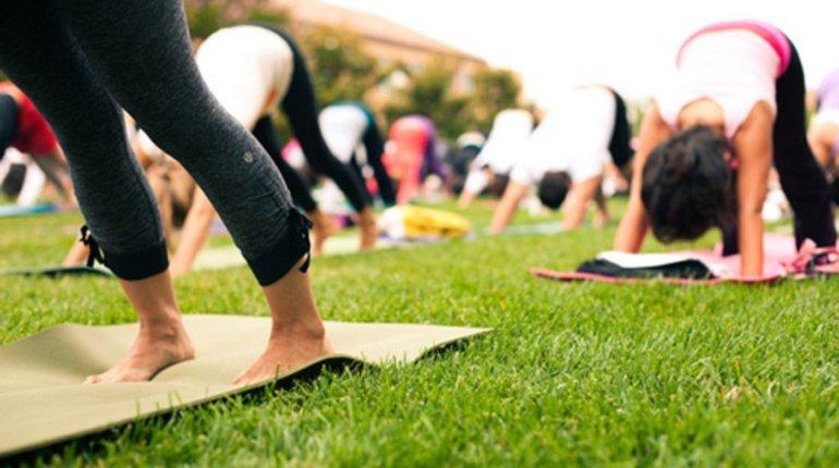 Try Outdoor Pilates! (Botanic Gardens)