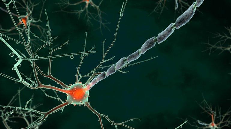 LDN Talks @ Night   Neuroscience of Emotions