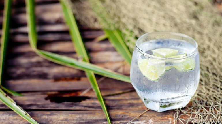 London's First Gin Swimming Pool