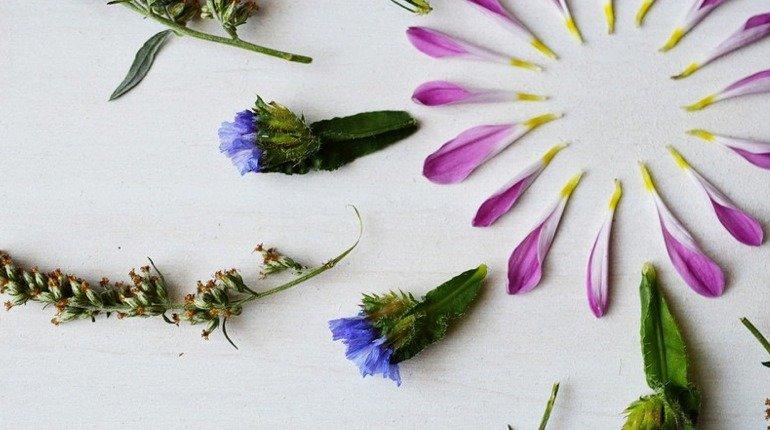 Floral Art Meditation