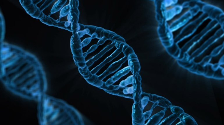 LDN Talks @ Night|How Do Your Genes Work?