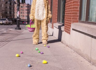Who Bunny Dunnit? ­ An Adults Easter Hunt