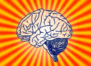 LDN Talks @ Night  How To Look After Your Brain b2b