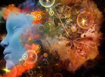 פרופ' אבשלום אליצור: האם אתם מבינים את תופעת החלום?