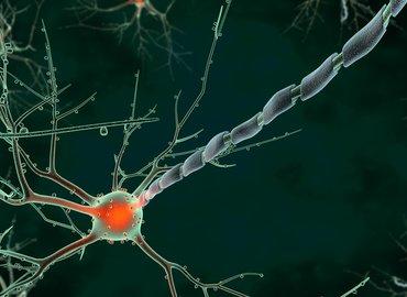 LDN Talks @ Night | Neuroscience of Emotions