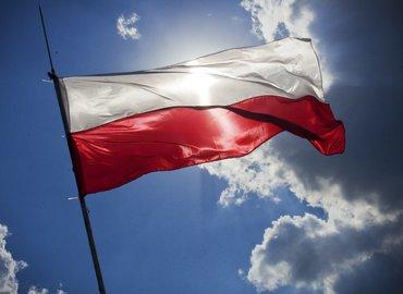 MADE IN POLSKA - 7 Polish Short Films