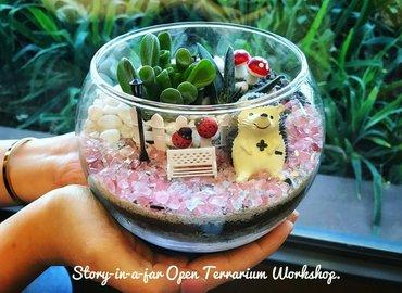 Story-in-a-jar: Open Terrarium Workshop