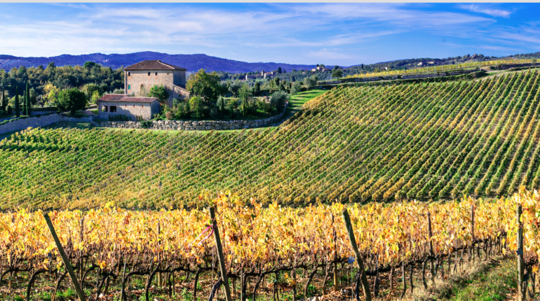 a business analysis of podere riosto an italian winery and vineyard The principal aim of the word in action directions on writing a great academic essay ministry an analysis of the importance of trade in the economy of developing nations.