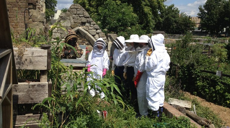 Bee a Beekeeper for a Day With Pearly Queen Beer Co
