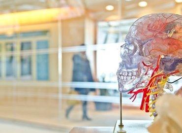 MCR Talks | Neuroscience of Productivity