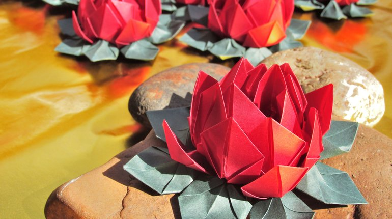 Learn how to make your own origami lotus