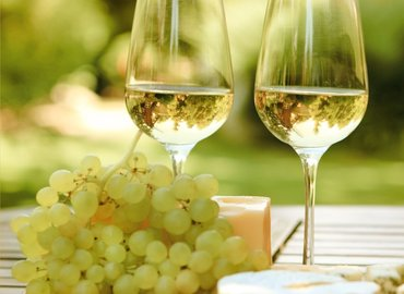A Beginner's Guide to French White Wines