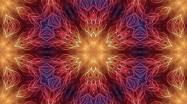 Funzing Talks | Ayahuasca - a Higher Intelligence?