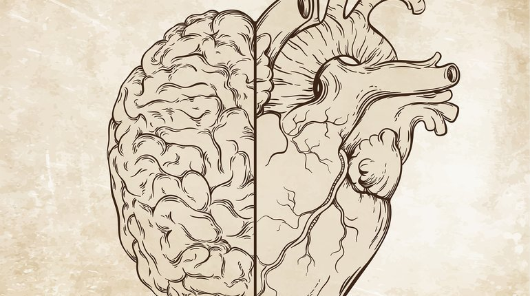 Valentine's Talks | The Neuroscience of Love