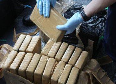 Funzing Talks | Is the Global War on Drugs Working?